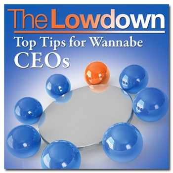 Top Tips for Wannabe CEO's MP3 Download