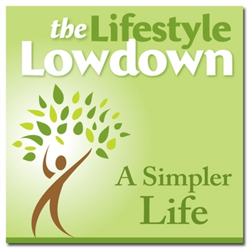 The Lifestyle Lowdown - A Simpler Life MP3 Download